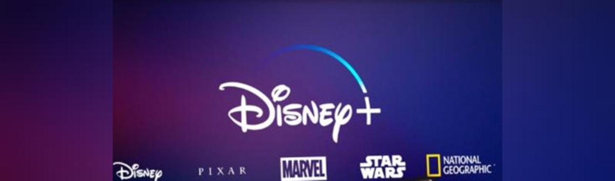 Disney Delays India Launch Via Hotstar Due To Ipl Postponement