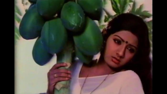 Sridevi's Hindi, Tamil films have been focus of pundits, but it's her Telugu roles that reflect unparalleled journey