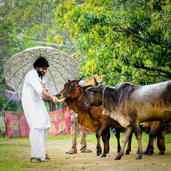 Pawan Kalyan With Gomathas Photos