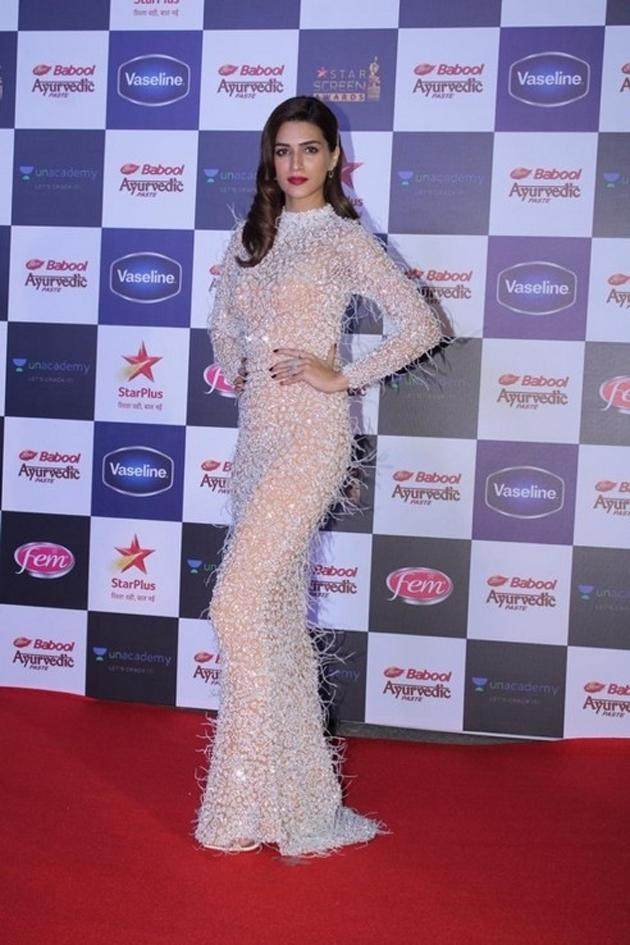 Celebs At Star Screen Awards 2019