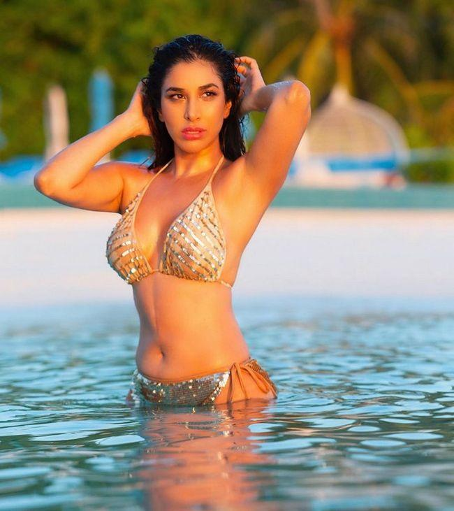 Charming Beauty Sophie Choudry Pics