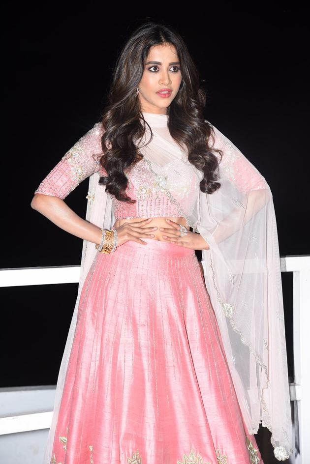 Nabha Natesh At Disco Raja Pre Release Event Photos