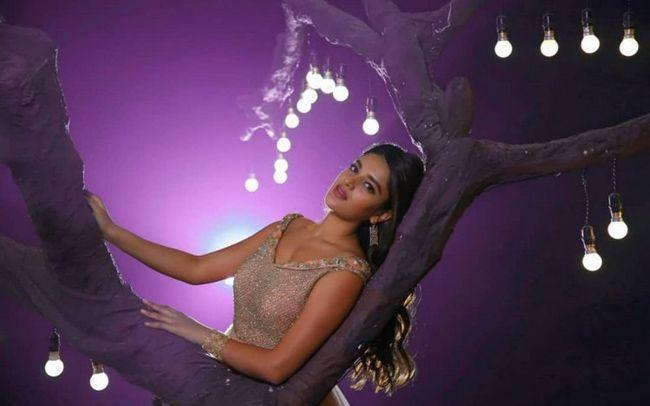 Nidhhi Agerwal Naughty Photoshoot