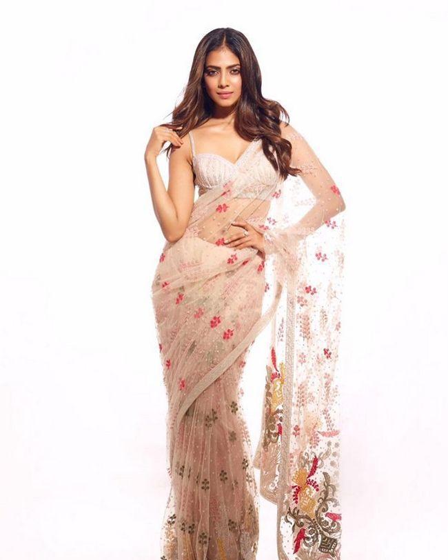 Malavika Mohanan Adorable Looks