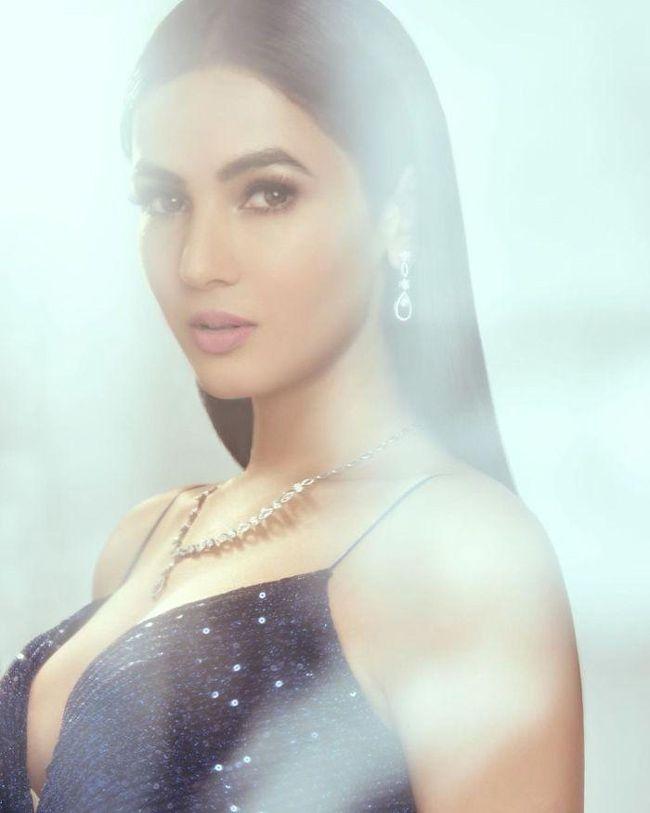 Sonal Chauhan Charming Photoshoot