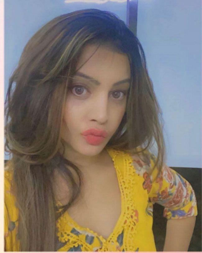 Diksha Panth Latest Images