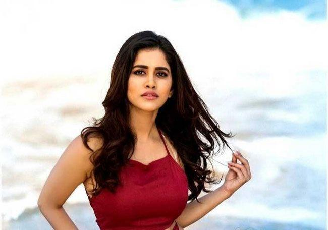 Nabha Natesh Photoshoot looks