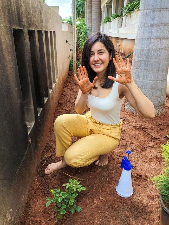celebrities Green India Challenge Photos