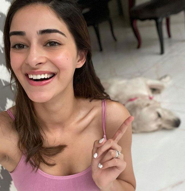 Ananya Panday Classy And Natural Looks