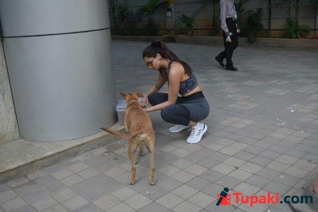 Daisy Shah Spotted At Boxing Class In Andheri