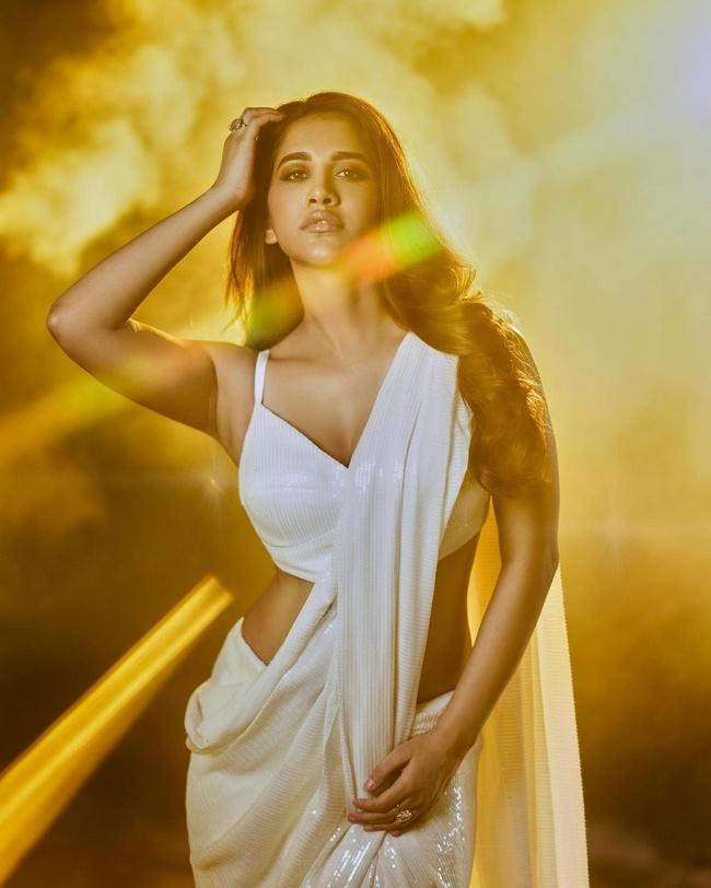 Saree pictures of Gorgeous Nabha Natesh