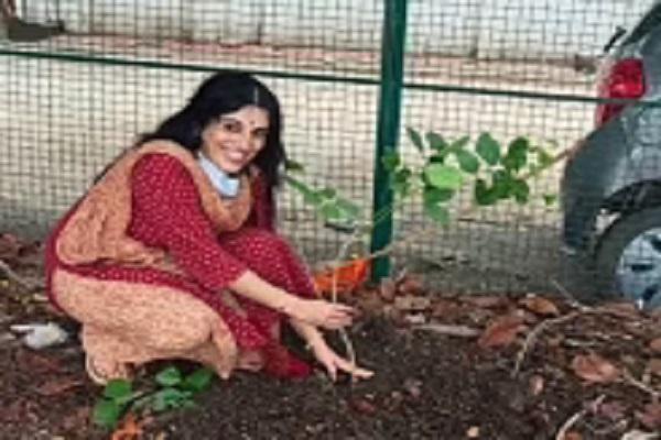 भोपाल में महिला समूह गोद ले रही पौधों को