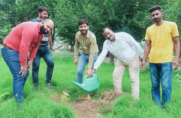पंजाब के वित्त विभाग के मुलाजिमों ने फलदार, फूलदार और छाया वाले पौधे लगाए