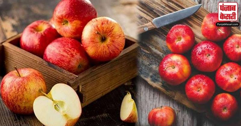 सेब खाने के बाद नहीं करने चाहिए ये काम, फायदे की जगह झेलनी पड़ सकती है मुसीबत