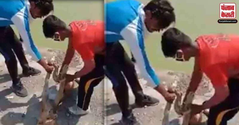 कुत्ते के हाथ-पैर बांध कर तालाब में फेंकने वाले युवकों को पुलिस ने किया गिरफ्तार,वायरल हुआ वीडियो