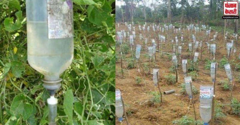 इस किसान ने ग्लूकोज की खाली बोतलों से बनाया ड्रिप सिस्टम, इतने कमाए