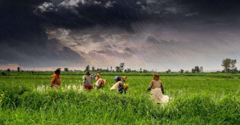 मप्र सरकार की किसानों को बड़ी सौगात, किसानों को हर साल 4 हजार रुपये की अतिरिक्त सम्मान निधि देगी