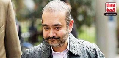 नीरव के वकील का आरोप - मोदी के खिलाफ भारत में चल सकता है राजनीति से प्रेरित मुकदमा