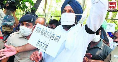 कृषि कानून : शिरोमणि अकाली दल ने कृषि भवन के पास कपास और मक्का को लेकर किया प्रदर्शन विरोध