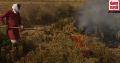 पराली जलाए जाने की हिस्सेदारी बढ़कर हुई 23 प्रतिशत