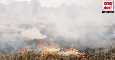 पराली जलाने की घटनाओं में इस साल 20 फीसदी की बढ़ोतरी: वायु गुणवत्ता आयोग सदस्य