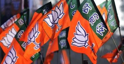 भाजपा मंगलवार को बूथ स्तर तक मनाएगी अपना स्थापना दिवस