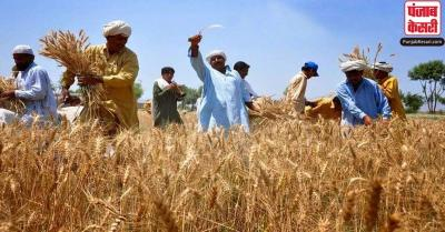 पंजाब के किसानों को पहली बार सीधे उनके बैंक खातों में मिला 8,180 करोड़ रुपये MSP: केन्द्र सरकार