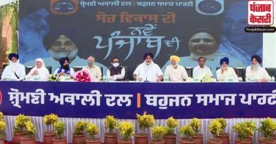 पंजाब विधानसभा चुनाव : अकाली दल और BSP के बीच गठबंधन, जानें किसे मिली कितनी सीटें
