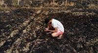 Field fires: Compensation up, but farm unions want more