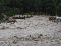 Saurabh Van Vihar submerges in Neugal