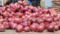 750 kg onions sold for Rs 1,064