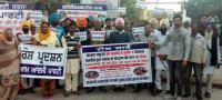 AAP protests govt inaction on stray animal menace