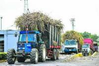 In Mauritius, sugarcane means renewable energy