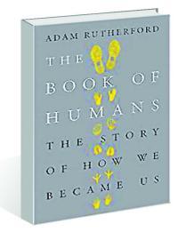 Complex narrative of human evolution