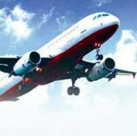 Ailing teen going to Bengaluru with family faints after boarding plane, dies