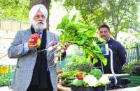 NGO roots for pesticide-free crops