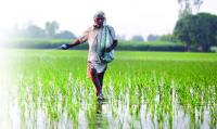 In state, only 6,409 opt for PM's crop insurance cover
