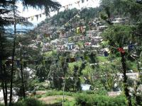 HC acts tough on illegal constructions in Dharamsala