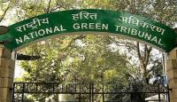 NGT directs action against builder for flouting norms