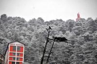 Himachal gets relief from snow, rain