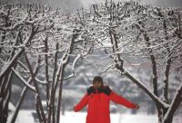 Seventh snow spell begins in Kashmir