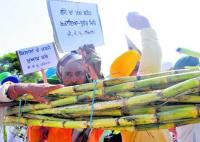 Sugarcane growers gear up for another round of protests