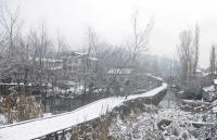 Cold wave grips Jammu and Kashmir