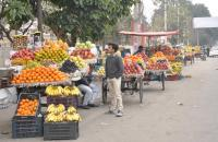 Vendors against civic body's policy on street vending zone