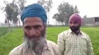 Special report from Amritsar on how the voters rate their sitting MP
