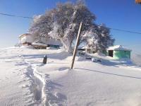 Kullu town gets season's first snow