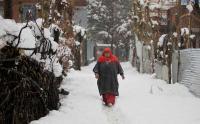Intense cold wave grips Kashmir Valley