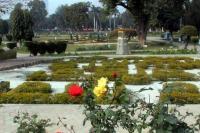 MCB plans to upgrade Rose Garden
