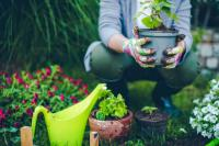 Singing, gardening in middle age may lower dementia risk
