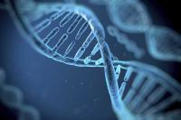 New DNA-like molecule to aid search for alien life